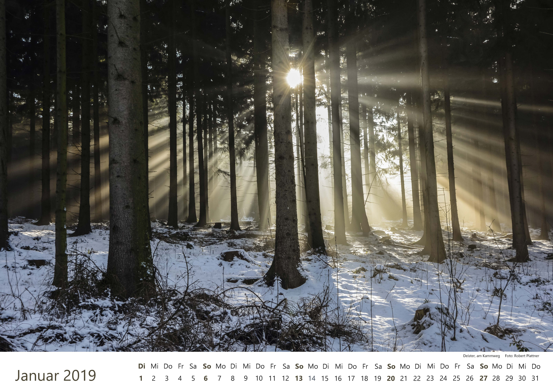 Kalender-2019-Zwischen-Ronnenberg-Deister- Robert-Plattner-Seite-01-Januar